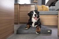 """""""4-Pfoten"""" Hundekissen für Wohnwagen und Wohnmobile"""
